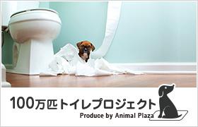 100万匹のトイレプロジェクト
