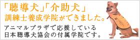 日本聴導犬・介助犬訓練士学院(JEITHS)
